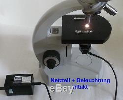Binokulares Arzt Forschungs Mikroskop Zeiss Standard 14 Vergr. 125x 1250x