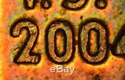 Carl Zeiss Jena Jenavert Dik DIC Inko Nomarski Interferenz Kontrast Mikroskop