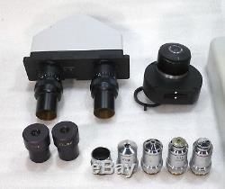 Labor Arzt Mikroskop Will BX300 Hellfeld Dunkelfeld Phasenkontrast 60-1250x
